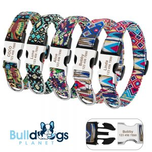 Colorful Pattern ID Collars