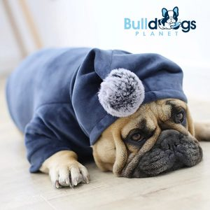 Winter Hoodie Pajama for Frenchies