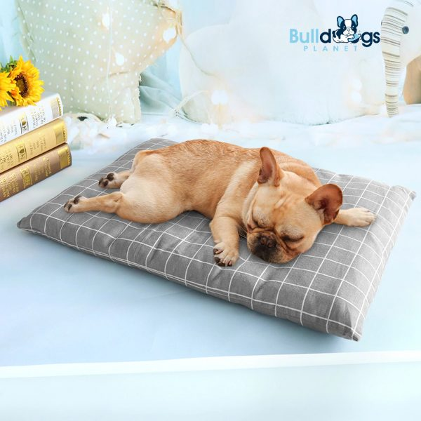 Winter Dog Bed House