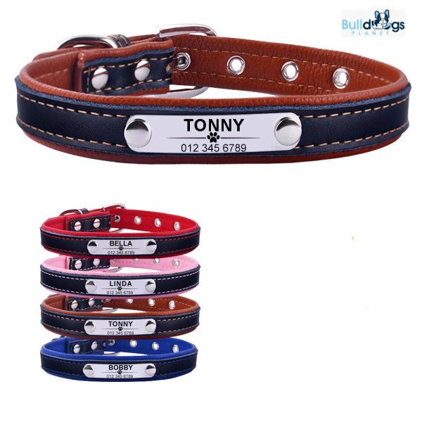 Adjustable Personalized Leather Collar/ ID Name