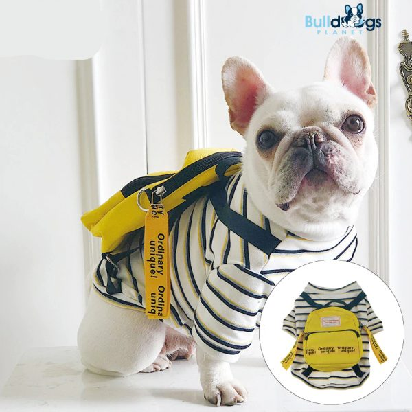 Black Strap Dog Clothes with Yellow Bag
