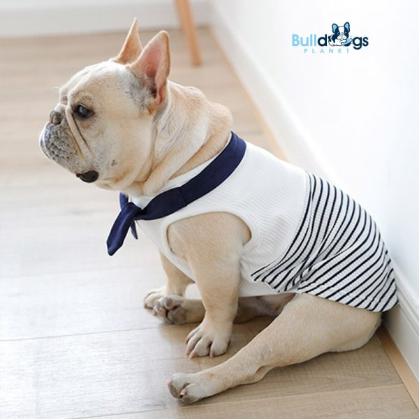 Striped Navy Style Outfit