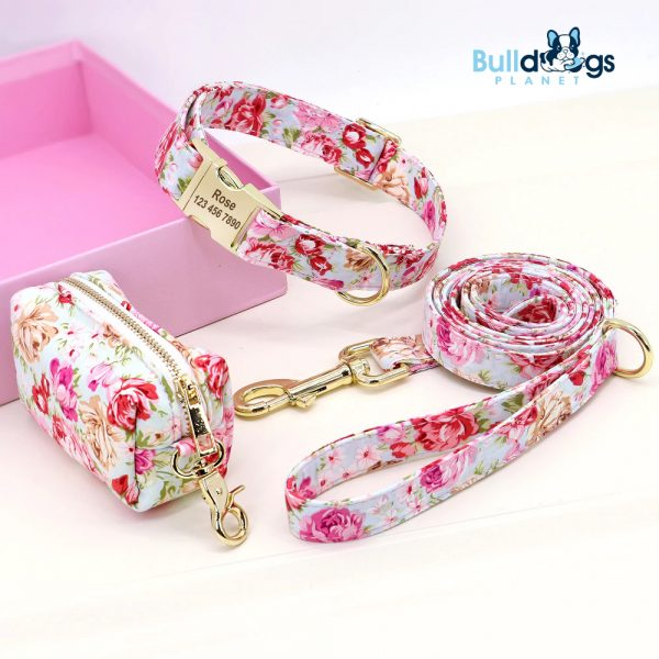 Dog Collars with Treat Snack Bag