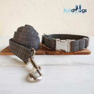 Designer Inspired Pet Collar with Lead