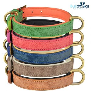 Double D-ring Adjustable Leather Collar